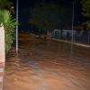 2014.10.02.lluvia-20